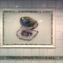 Oyster Kitchen Backsplash in Glass